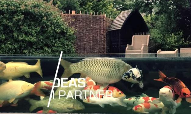 Koi Pond Designs | TOP 3 MOST BEAUTIFUL BACKYARD KOI PONDS IN THE WORLD
